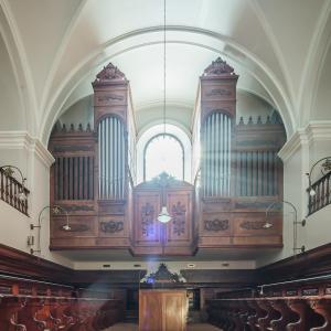 el organo